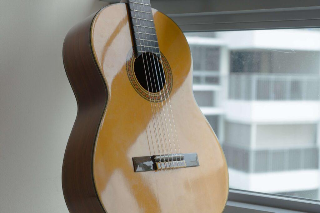 Falcon Acoutic Guitars