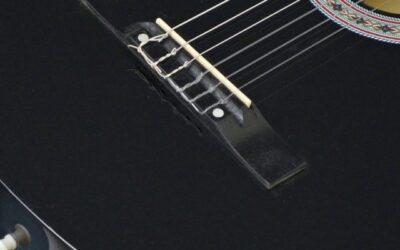 Fender DG60CE