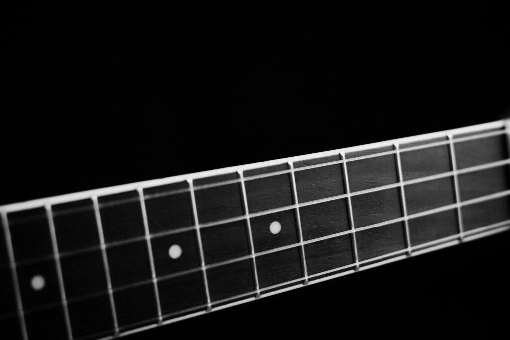 review - bass guitar black